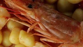Gnocchi πατατών με τις γαρίδες απόθεμα βίντεο