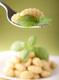 Gnocchi and basil Royalty Free Stock Images
