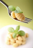 Gnocchi and basil Stock Images
