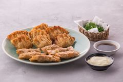Gnocchi cinesi e coreani casalinghi del pollo fritto immagini stock