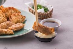 Gnocchi cinesi e coreani casalinghi del pollo fritto fotografia stock