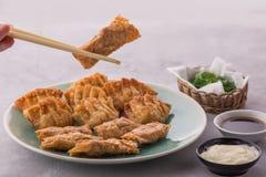 Gnocchi cinesi e coreani casalinghi del pollo fritto immagine stock