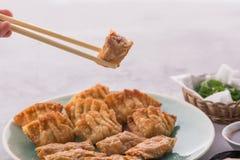 Gnocchi cinesi e coreani casalinghi del pollo fritto immagini stock libere da diritti