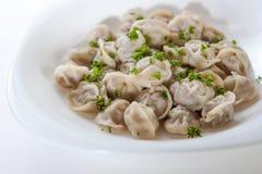 Gnocchi della carne con i verdi su un piatto bianco Immagine Stock
