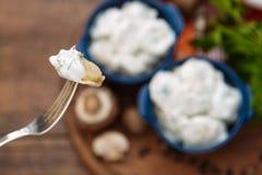 Gnocchi della carne - il Russo ha bollito il pelmeni in piatto Immagine Stock