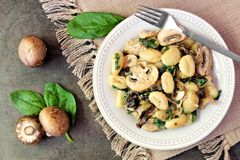 Gnocchi with mushroom sauce, spinach. Gnocchi with a mushroom cream sauce, spinach, chicken and sun dried tomatoes, above scene on a dark stone background Stock Images