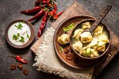 Gnocchi russi con carne e brodo in uno stile rustico Fotografia Stock