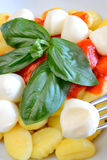 Gnocchi Sorrento Royalty Free Stock Image