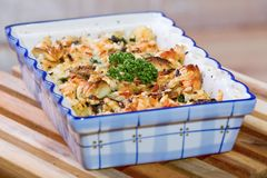 Gnocchi van het braadstuk met spinazie en kippenvlees Royalty-vrije Stock Afbeeldingen