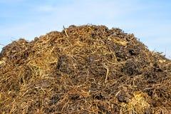 Gnojowy wzgórze Zdjęcie Stock
