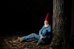 Gnom pod drzewem 5 Zdjęcia Royalty Free