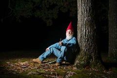 Gnom under träd 3 arkivfoto