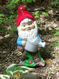 gnome сада Стоковая Фотография