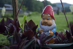 gnome Photographie stock