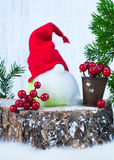 gnome Fotografie Stock Libere da Diritti