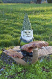 Gnome che sta dietro il fungo enorme del fungo in prato Immagine Stock Libera da Diritti
