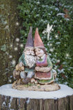 Gnome couple hugging on tree stump with snowflake fairy Stock Image