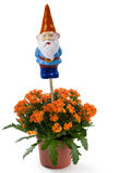 Gnome de jardin avec des fleurs Photos libres de droits