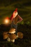 Gnome de jardin la nuit Image libre de droits