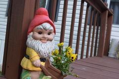 Gnome del fiore Fotografie Stock