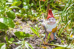 Gnome do jardim Fotografia de Stock Royalty Free