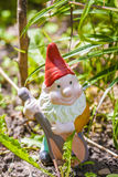 Gnome do jardim Fotos de Stock Royalty Free
