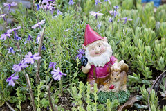 Gnome figurine in garden Royalty Free Stock Images