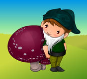 Gnome, illustration Royalty Free Stock Image