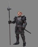 Gnome Knight Stock Images