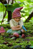 Gnome in lush garden Stock Photos
