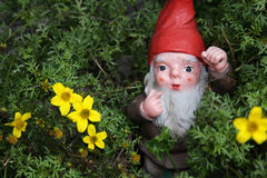 Gnome in the meadow Royalty Free Stock Photo