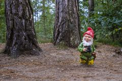Gnome ranger in the forest Stock Photo