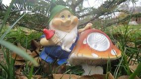 Gnome sotto l'abete rosso Fotografie Stock