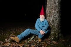 Gnome sous l'arbre 6 Photographie stock
