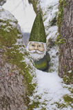 Gnome in tree with green hat and snow covered branches Royalty Free Stock Images