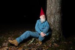 Gnome under tree 2 Stock Photography