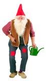 Gnome vivant de jardin avec la boîte d'arrosage Photographie stock