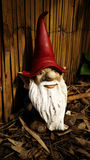 Gnome in wood background. A garden gnome is taken in wood background Royalty Free Stock Images