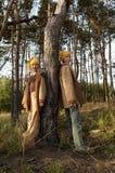 Gnomen in het bos Royalty-vrije Stock Foto