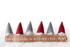 Gnomen, Witte Achtergrond, Tekst Vrolijke Kerstmis en Gelukkig Nieuwjaar Stock Afbeeldingen