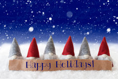 Gnomes, Blue Background, Snowflakes, Text Happy Holidays Royalty Free Stock Photo