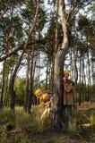 Gnomes dans la forêt image libre de droits