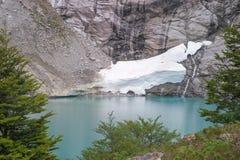 Queulat National Park, Chile. Gnomes lagoon on the Bosque Encantado trail of Queulat National Park, Chile Stock Image