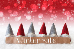 Gnomes, Red Background, Bokeh, Stars, Text Winter Sale Stock Images