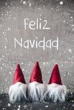 Gnomes rouges, flocons de neige, Feliz Navidad Means Merry Christmas photo libre de droits