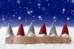 Gnomi, fondo blu, stelle, fiocchi di neve, spazio della copia Immagine Stock Libera da Diritti