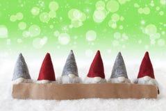 Gnomi, fondo verde, Bokeh, stelle, fiocchi di neve, spazio della copia Fotografia Stock