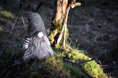 Gnomo da floresta em uma pedra Foto de Stock