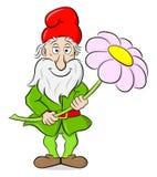 Gnomo del giardino del fumetto che tiene un singolo fiore in sue mani Fotografia Stock