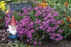 Gnomo do jardim Fotos de Stock Royalty Free